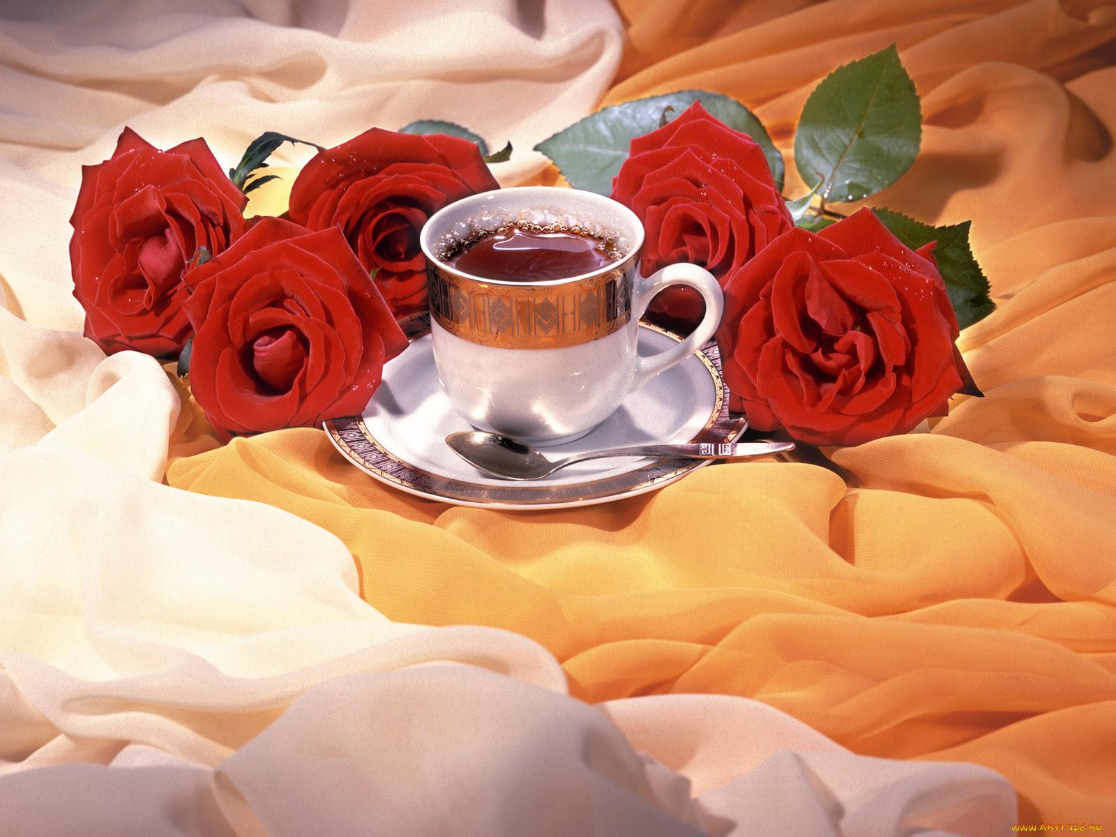 Открытка доброе утро удачного дня